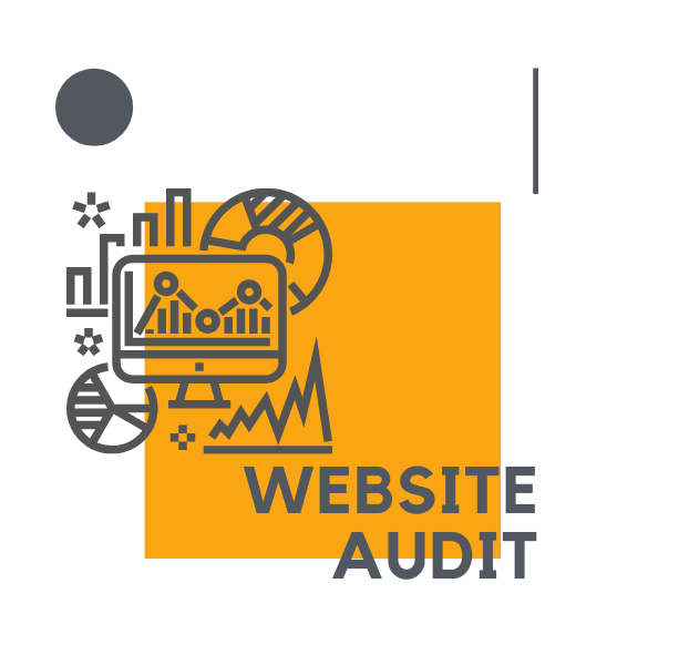 website audit \